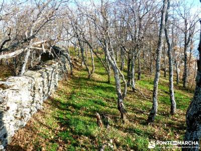 La Cachiporrilla - Altos del Hontanar; rutas por madrid; rutas por la sierra de madrid;tamajon ciuda